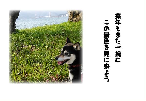 20140831-6.jpg