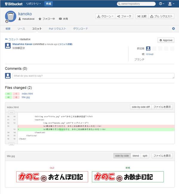 bitbucket_04.jpg